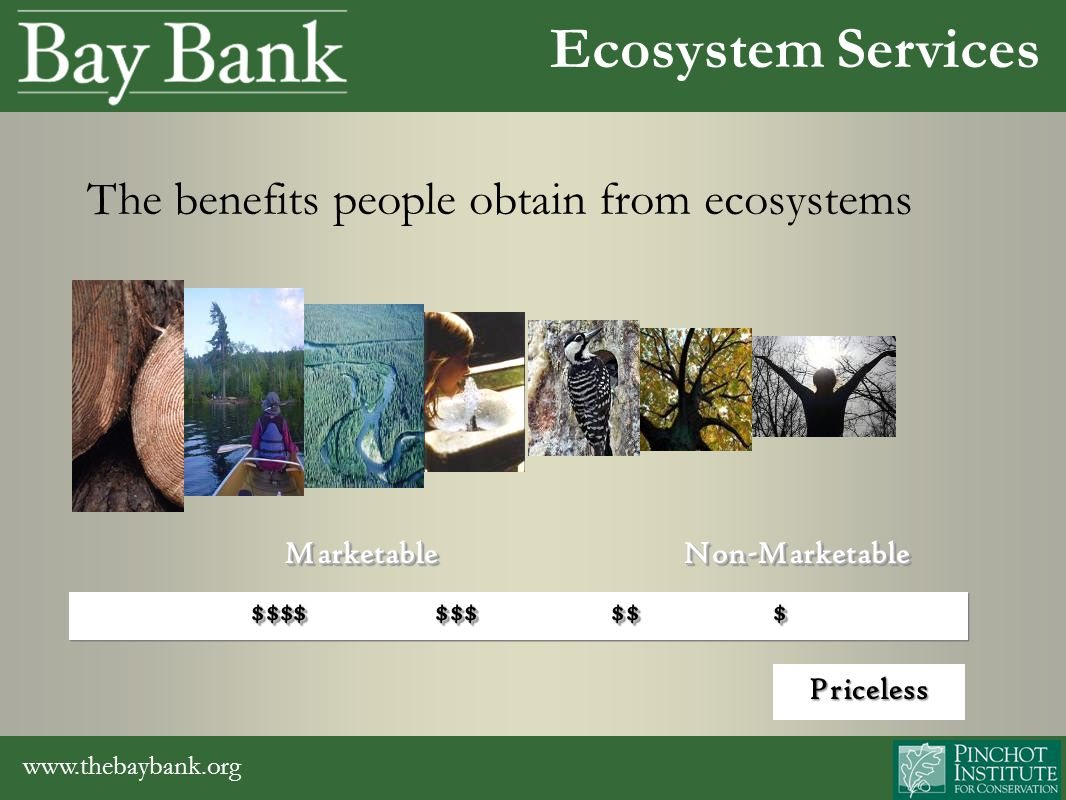 www.thebaybank.org Ecosystem Services Marketable Non-Marketable Marketable Non-Marketable $$$$ $$$ $$ $ Marketable Non-Marketable Marketable Non-Marketable $$$$ $$$ $$ $ The benefits people obtain from ecosystems Priceless