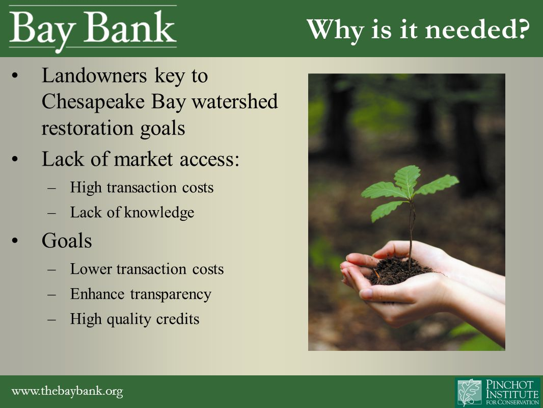www.thebaybank.org Regulatory market opportunities – Provide landowners with basic market information – Educate landowners about the process of bank development – Connect landowners with project developers – In discussion with State Highway Administration to help with mitigation obligations Habitat