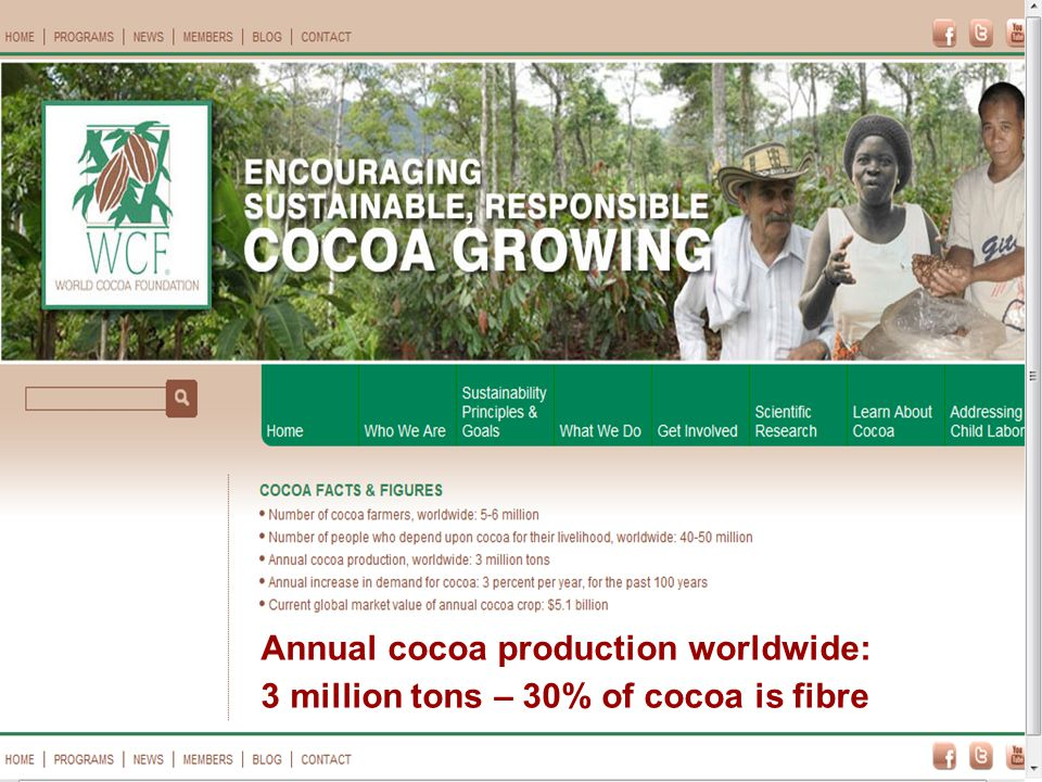 Annual cocoa production worldwide: 3 million tons – 30% of cocoa is fibre a
