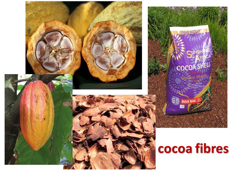 cocoa fibres