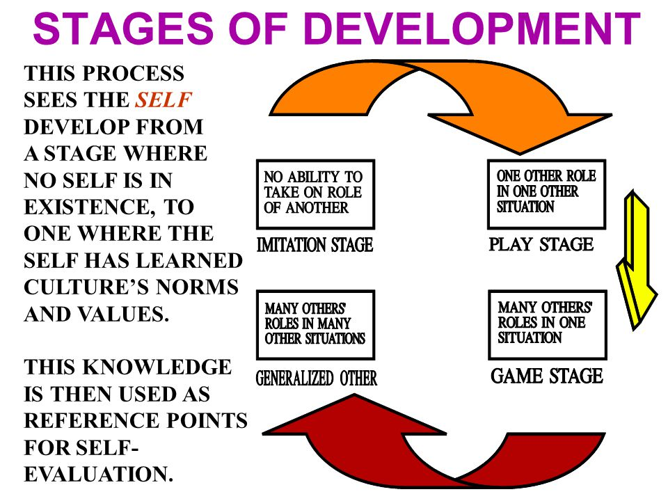 STAGES OF DEVELOPMENT THIS PROCESS SEES THE SELF DEVELOP FROM A STAGE WHERE NO SELF IS IN EXISTENCE, TO ONE WHERE THE SELF HAS LEARNED CULTURE'S NORMS