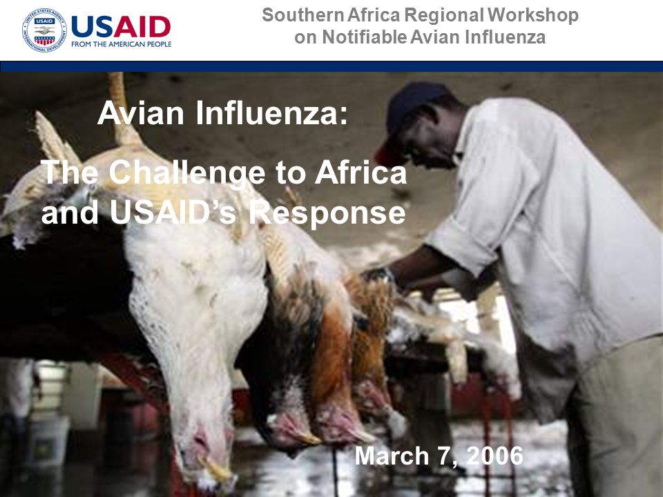 Avian Influenza: The Challenge to Africa and USAID's Response March 7, 2006 Southern Africa Regional Workshop on Notifiable Avian Influenza