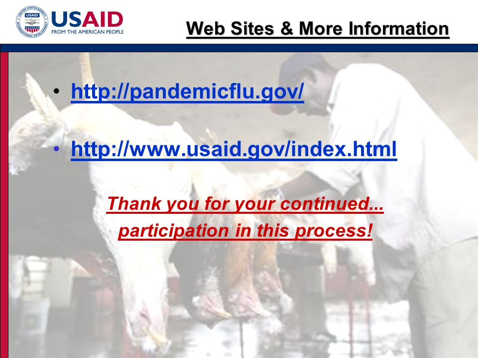 Web Sites & More Information http://pandemicflu.gov/ http://www.usaid.gov/index.html Thank you for your continued...