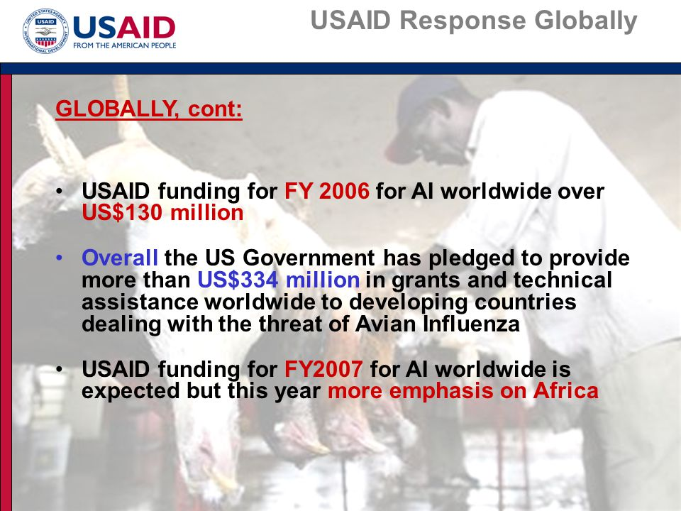 Meeting the Challenge in Africa USAID's INITIAL REPONSES IN AFRICA: USAID/Washington: Avian Influenza Response concept paper July 2005 Convened Washington meeting with representatives of the African Diplomatic Corps Hosted discussions with USAID/African mission health officers and FAO Established a Washington AI Task Force Mandated the establishment of a network of AI Focal Points (animal health, human health and communications) at each USAID/Africa Mission Mandated active participation by mission AI Focal Points on US Embassy Task Forces and participation wherever requested, on National AI Task Forces