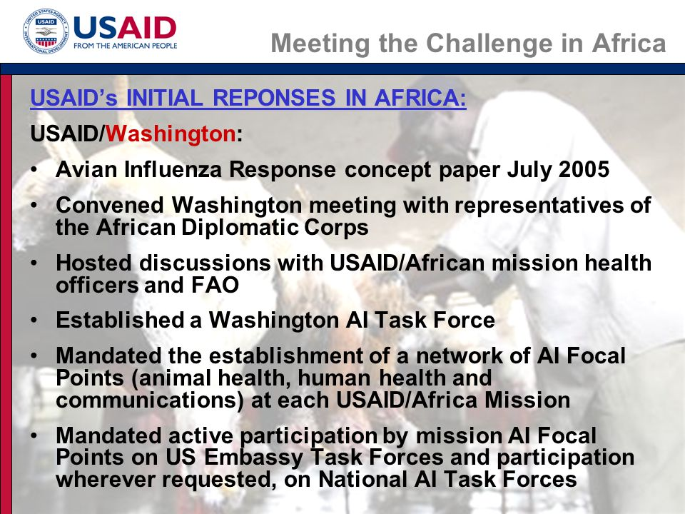 Meeting the Challenge in Africa USAID's INITIAL REPONSES IN AFRICA: USAID/Washington, cont.: Support to WHO/AFRO for regional AI activities Support to FAO for AI meetings and future activities Active participation in the International Partnership on Avian and Pandemic Influenza (IPAPI) USAID/Regional Offices: Coordination with regional intergovernmental bodies (SADC, ECOWAS, IGAD, etc.) Development of sub-regional USAID AI Strategies and regional activities for East (REDSO/Nairobi), West (WARP/Accra), Southern (RCSA/Gaborone)