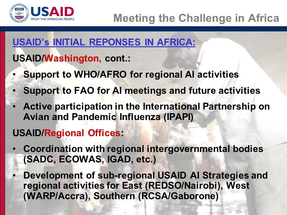 Meeting the Challenge in Africa USAID's INITIAL REPONSES IN AFRICA, continued USAID/ Bilateral Country Missions: Tanzania, Ethiopia & Ghana: technical support & funding for: –Country AI assessments –Wild bird surveillance –Strengthening of national and regional laboratory capacity Ethiopia, Ghana, Mozambique and Senegal helped establish Cross- sector National Avian Influenza Task Forces USAID/Tanzania and USAID/Ethiopia redirected US$675,000 for immediate surveillance and testing Multiple USAID offices have redirected another US$1.5 million unspent from the Tsunami Reconstruction and Relief Fund to bolster monitoring and combating the spread of H5N1.