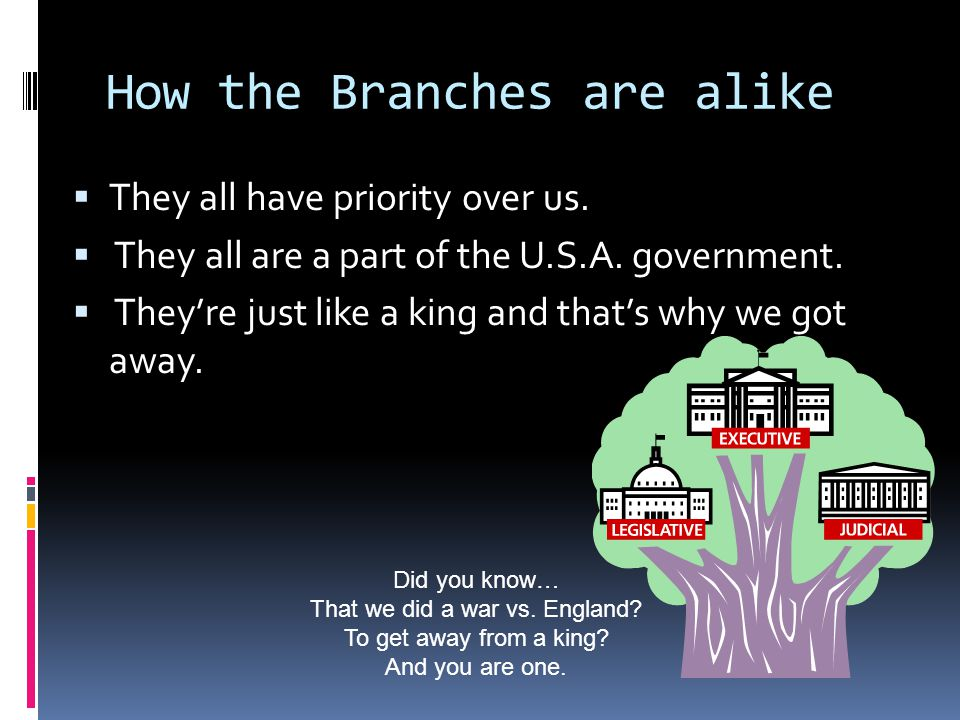 How the Branches are alike  They all have priority over us.  They all are a part of the U.S.A. government.  They're just like a king and that's why
