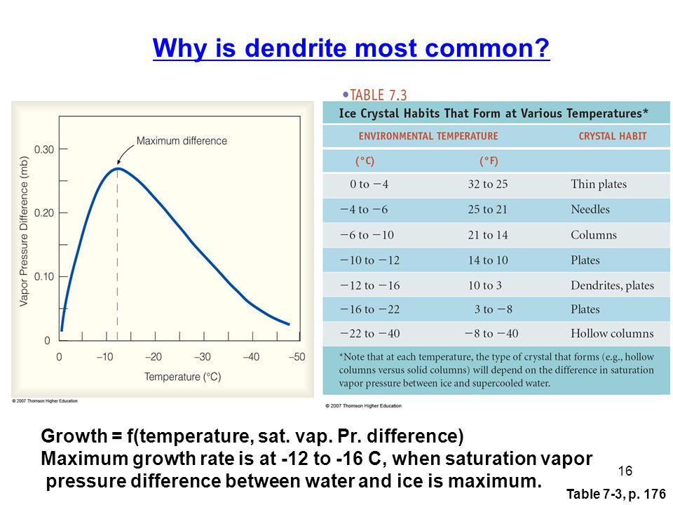 Table 7-3, p. 176 16 Why is dendrite most common.