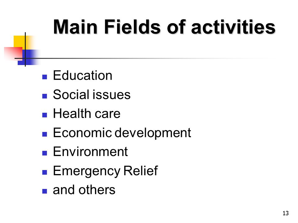 13 Main Fields of activities Education Social issues Health care Economic development Environment Emergency Relief and others