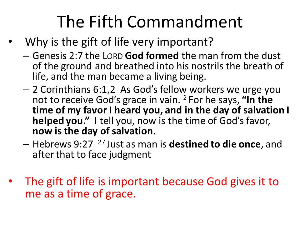 The Fifth Commandment Why is the gift of life very important.