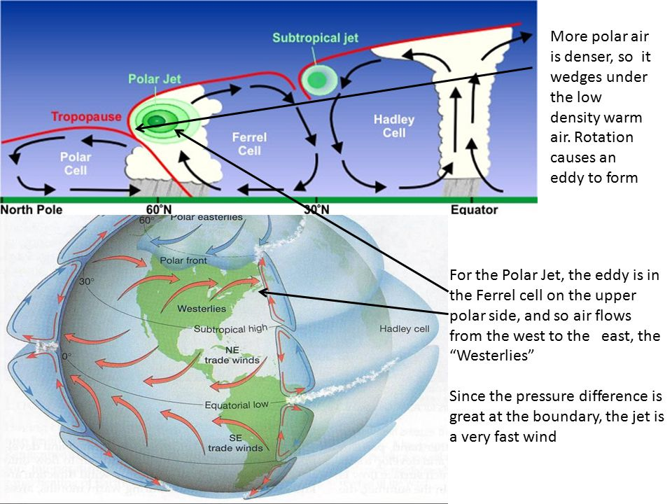 For the Polar Jet, the eddy is in the Ferrel cell on the upper polar side, and so air flows from the west to the east, the Westerlies Since the pressure difference is great at the boundary, the jet is a very fast wind More polar air is denser, so it wedges under the low density warm air.