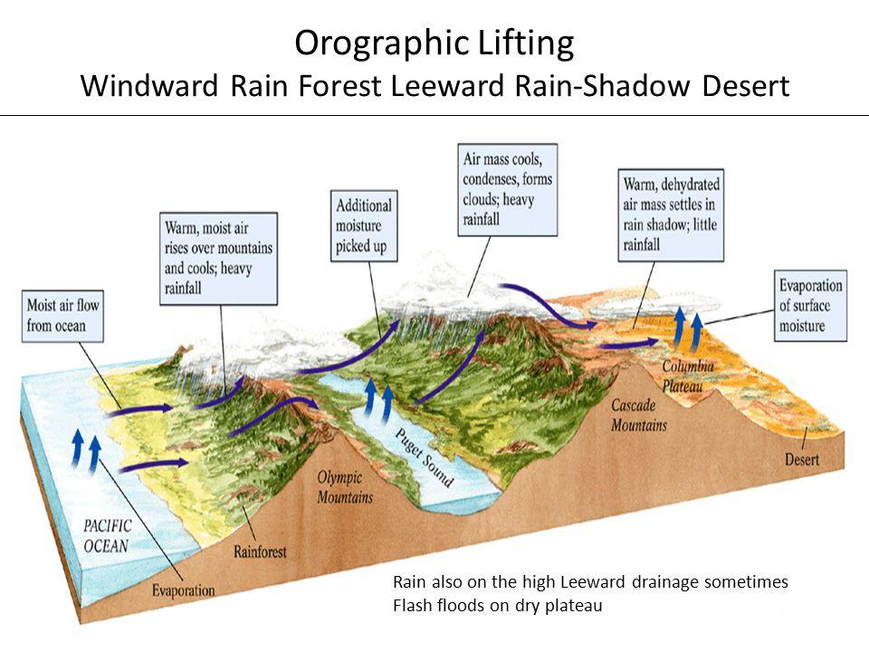 Orographic Lifting Windward Rain Forest Leeward Rain-Shadow Desert Rain also on the high Leeward drainage sometimes Flash floods on dry plateau