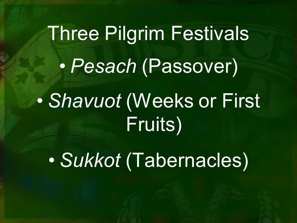 Three Pilgrim Festivals Pesach (Passover) Shavuot (Weeks or First Fruits) Sukkot (Tabernacles)