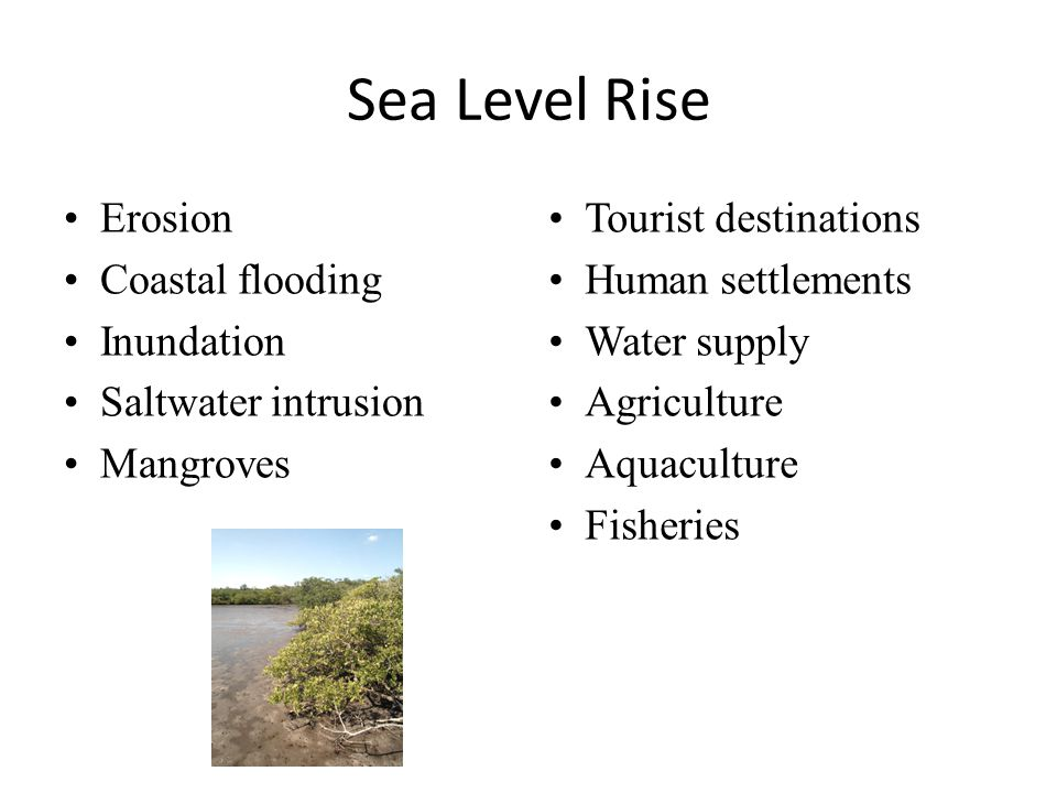 Sea Level Rise Erosion Coastal flooding Inundation Saltwater intrusion Mangroves Tourist destinations Human settlements Water supply Agriculture Aquaculture Fisheries