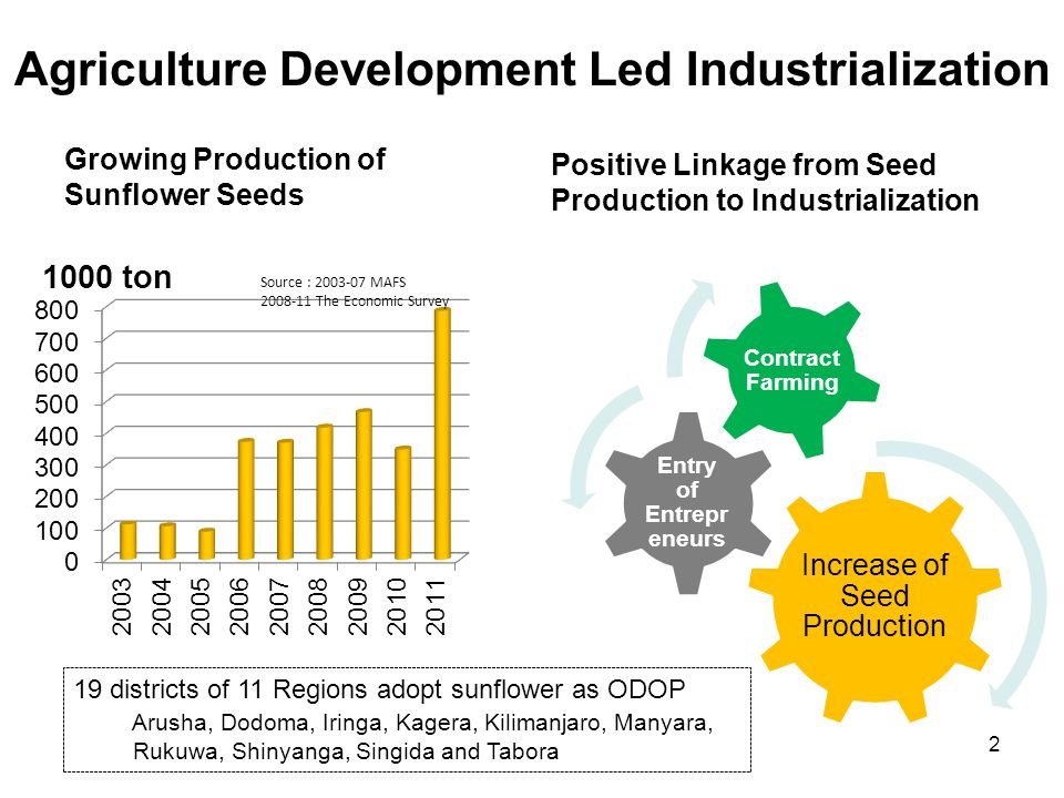 Agriculture Development Led Industrialization Growing Production of Sunflower Seeds Positive Linkage from Seed Production to Industrialization Increase of Seed Production Entry of Entrepre neurs Contract Farming Source : 2003-07 MAFS 2008-11 The Economic Survey 19 districts of 11 Regions adopt sunflower as ODOP Arusha, Dodoma, Iringa, Kagera, Kilimanjaro, Manyara, Rukuwa, Shinyanga, Singida and Tabora 2