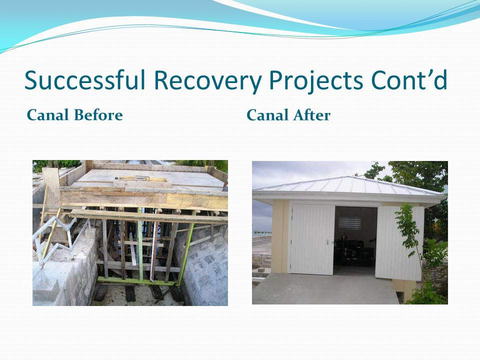 Successful Recovery Projects Cont'd Canal Before Canal After