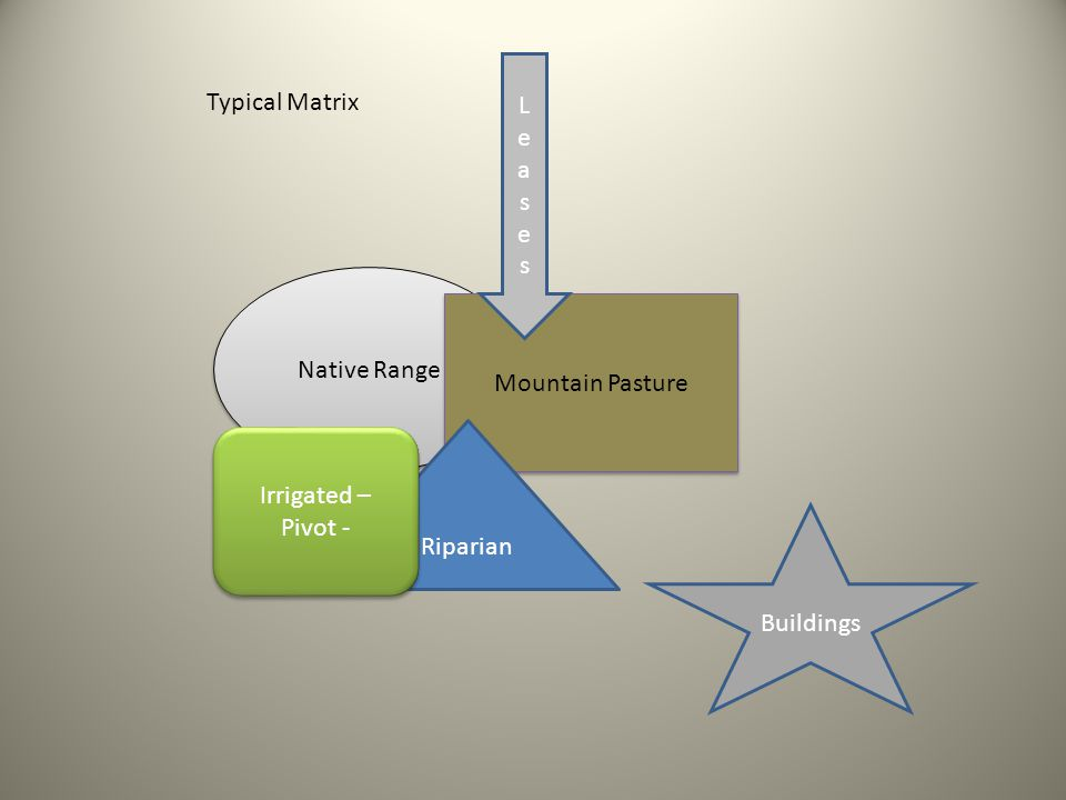 Native Range Mountain Pasture Riparian Irrigated – Pivot - Buildings LeasesLeases Typical Matrix