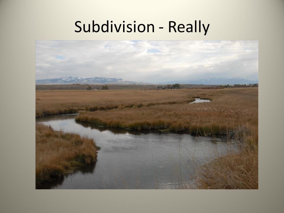 Subdivision - Really
