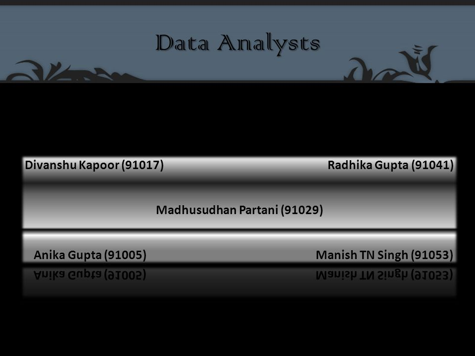 Data Analysts