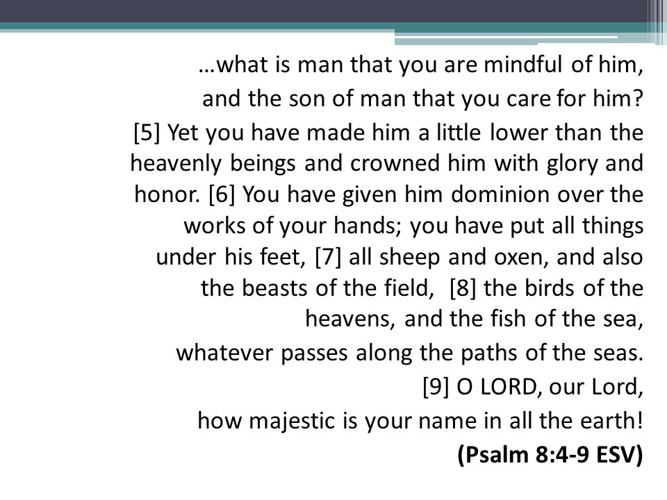 …what is man that you are mindful of him, and the son of man that you care for him.