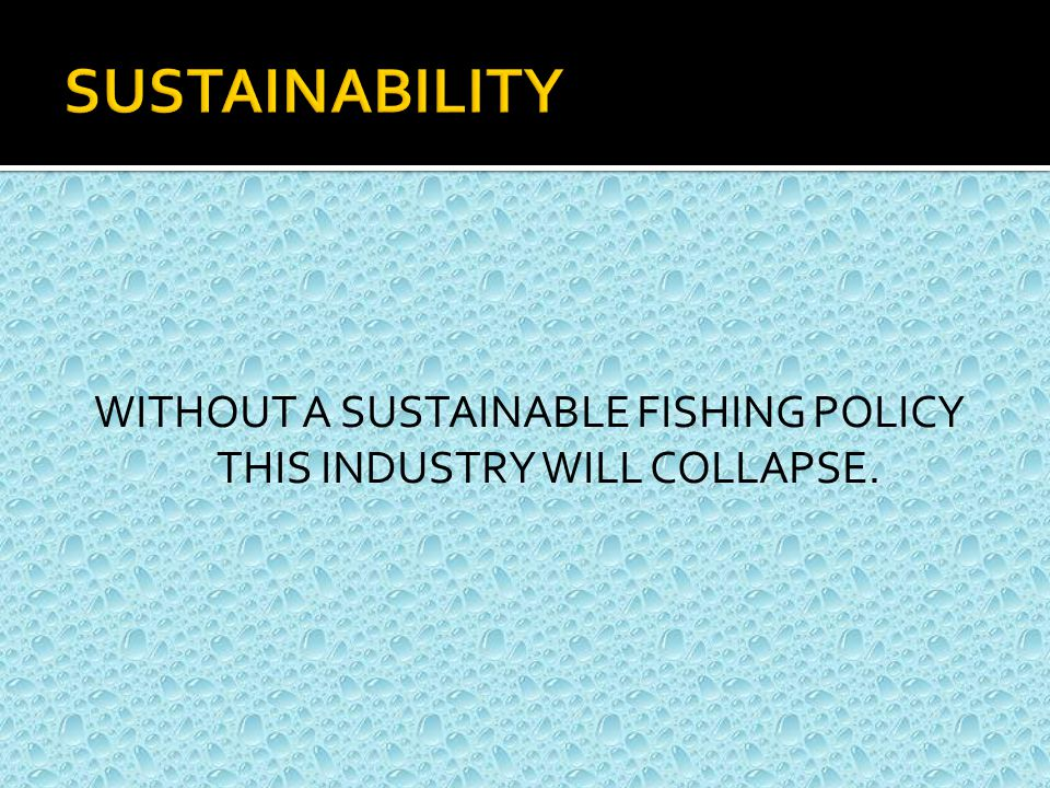 WITHOUT A SUSTAINABLE FISHING POLICY THIS INDUSTRY WILL COLLAPSE.