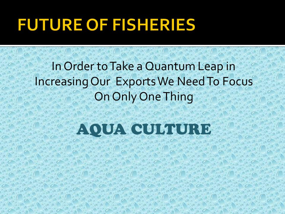 In Order to Take a Quantum Leap in Increasing Our Exports We Need To Focus On Only One Thing AQUA CULTURE