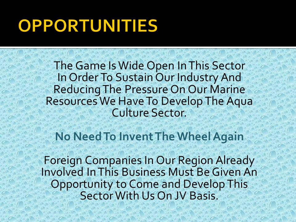 The Game Is Wide Open In This Sector In Order To Sustain Our Industry And Reducing The Pressure On Our Marine Resources We Have To Develop The Aqua Culture Sector.