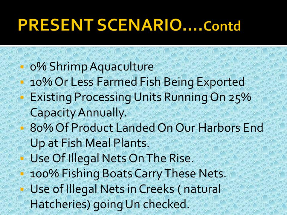  Fisheries Exports Of India Are Crossing US$ 3 Billion Mark  Bangladesh Is Over US$ 1 Billion  Vietnam US$ 5 Billion  Thailand US$ 10 Billion  Iran And Saudi Arabia Have Made Remarkable Headways In Shrimp Farming.