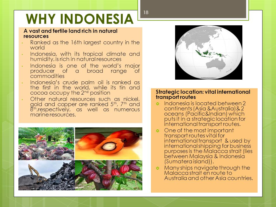 WHY INDONESIA 18 A vast and fertile land rich in natural resources Ranked as the 16th largest country in the world Indonesia, with its tropical climat