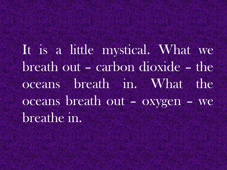 It is a little mystical. What we breath out – carbon dioxide – the oceans breath in.