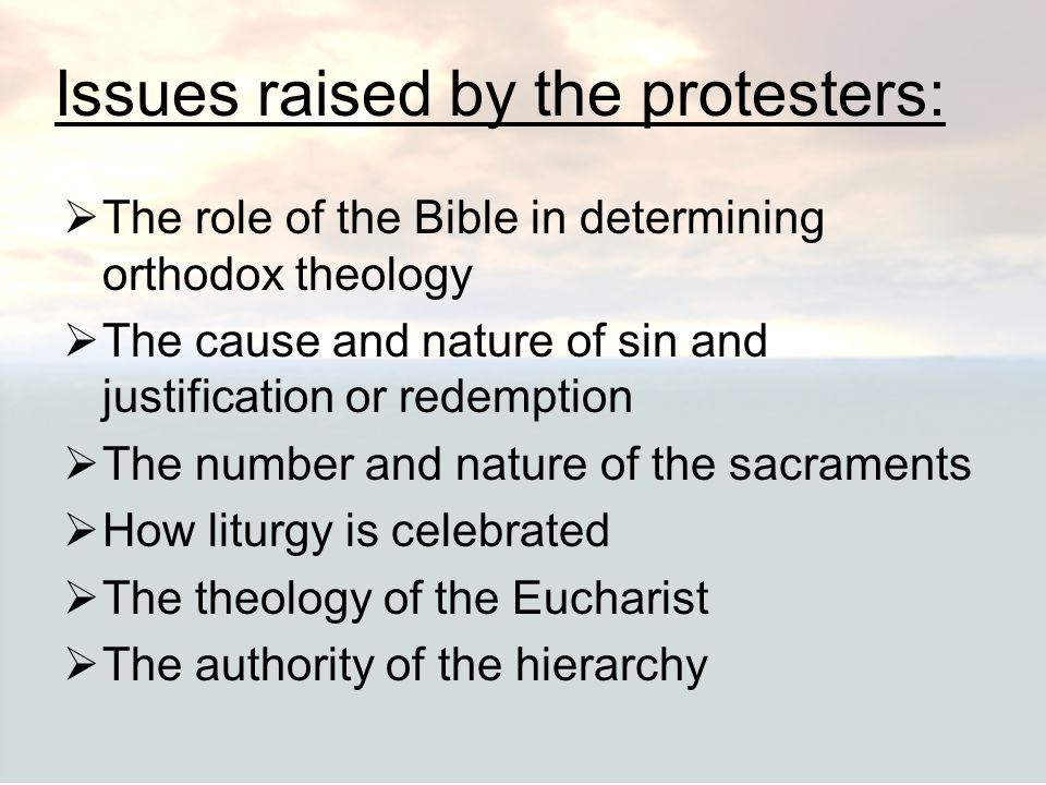 Issues raised by the protesters:  The role of the Bible in determining orthodox theology  The cause and nature of sin and justification or redemptio