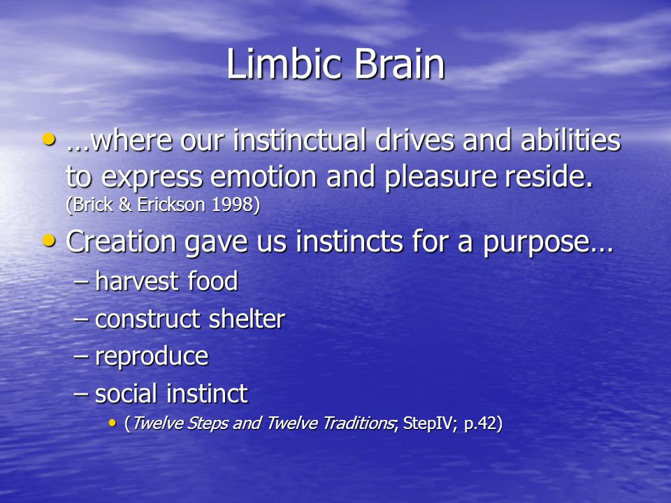 Limbic Brain …where our instinctual drives and abilities to express emotion and pleasure reside. (Brick & Erickson 1998) …where our instinctual drives
