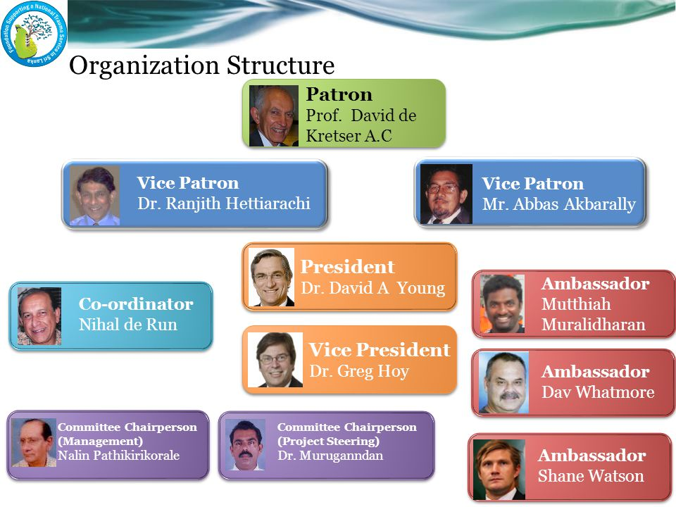 Organization Structure President Dr. David A Young Patron Prof.