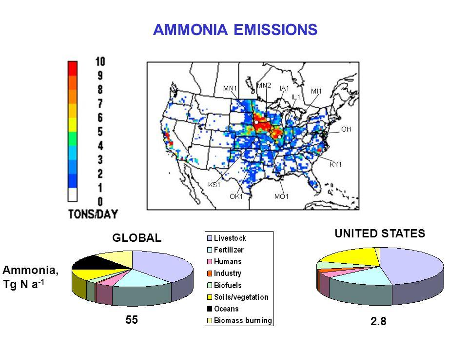 AMMONIA EMISSIONS Ammonia, Tg N a -1 GLOBAL UNITED STATES 55 2.8