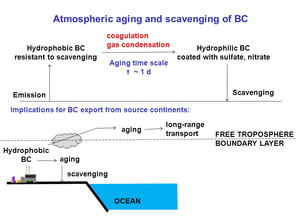 Atmospheric aging and scavenging of BC Emission Hydrophobic BC resistant to scavenging coagulation gas condensation Hydrophilic BC coated with sulfate, nitrate Scavenging Aging time scale τ ~ 1 d Implications for BC export from source continents: OCEAN aging scavenging Hydrophobic BC aging long-range transport FREE TROPOSPHERE BOUNDARY LAYER