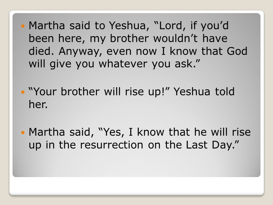 When Yeshua reached the spot, he looked up and said, Zacchaeus, hurry up and come down.