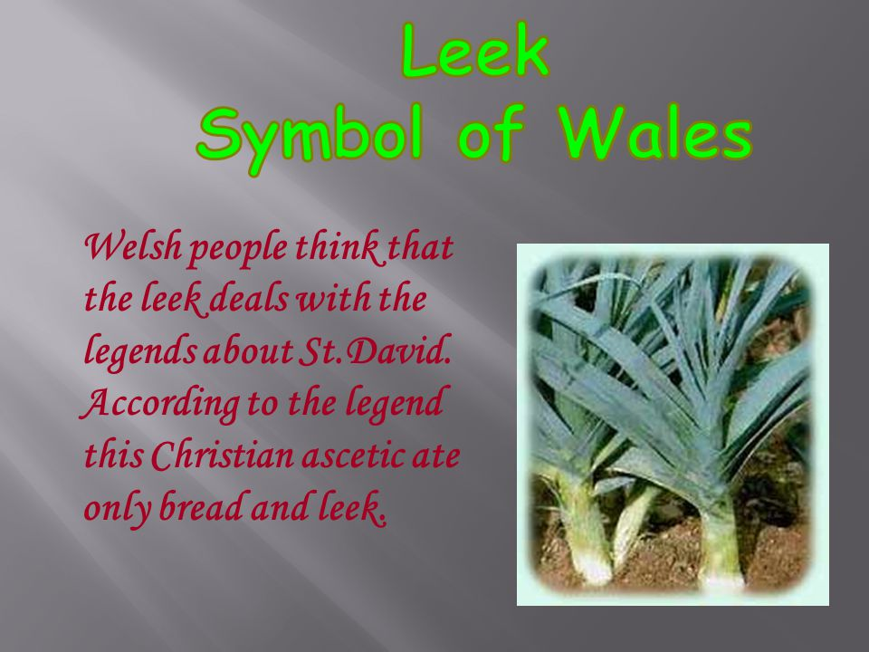Welsh people think that the leek deals with the legends about St.David.