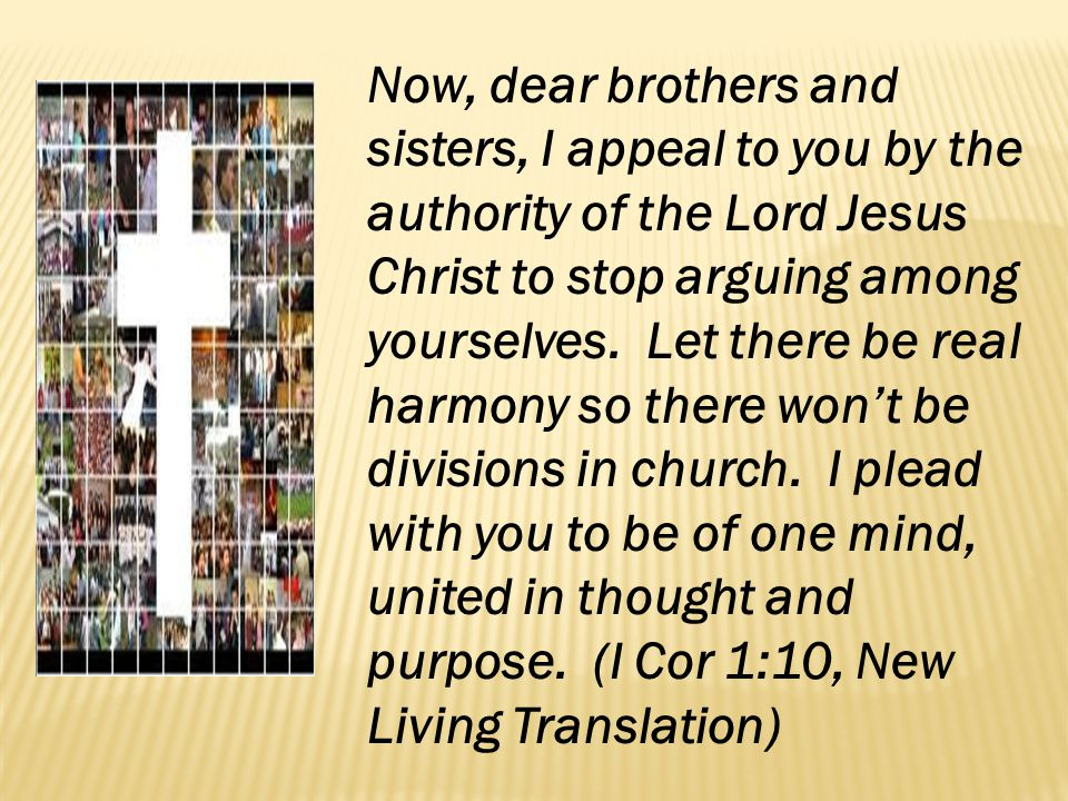 Now, dear brothers and sisters, I appeal to you by the authority of the Lord Jesus Christ to stop arguing among yourselves.