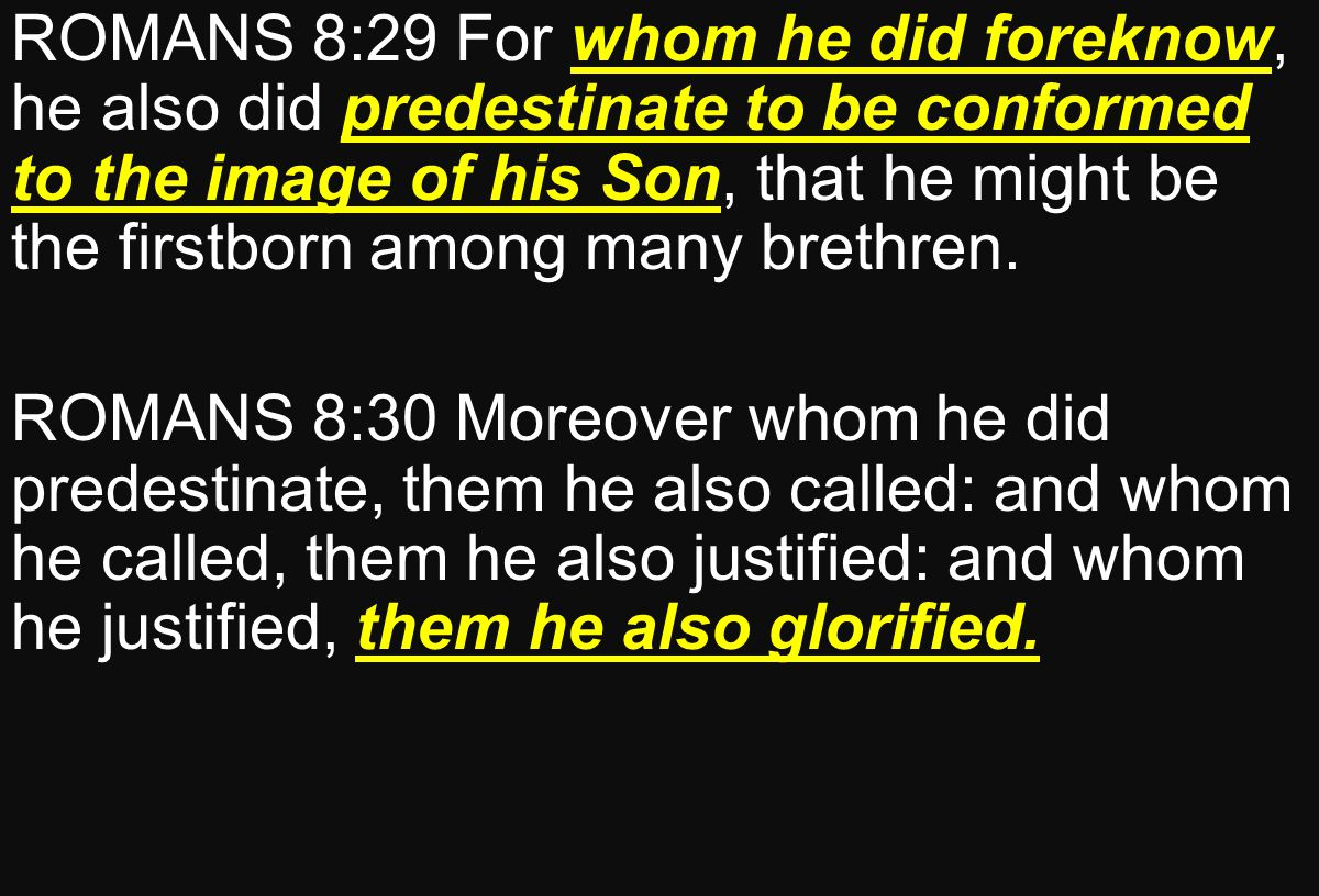 ROMANS 8:29 For whom he did foreknow, he also did predestinate to be conformed to the image of his Son, that he might be the firstborn among many brethren.