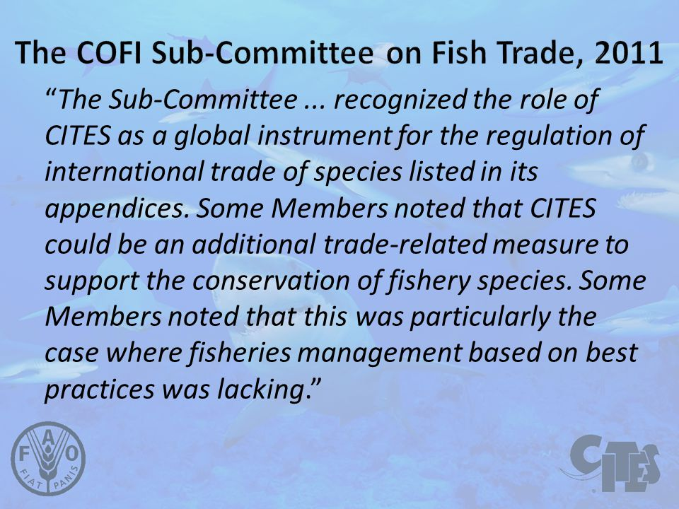 10 The Sub-Committee...