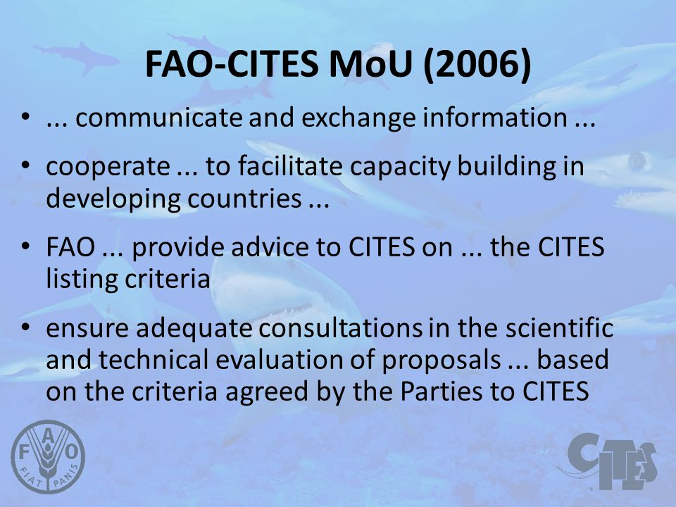 FAO-CITES MoU (2006)... communicate and exchange information...
