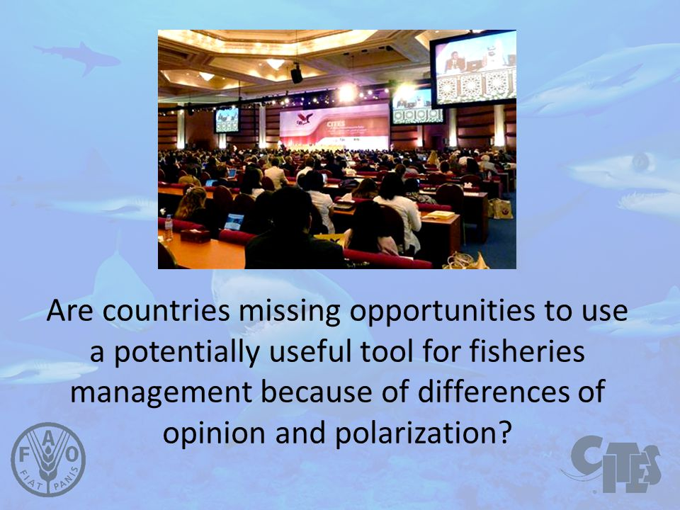 Are countries missing opportunities to use a potentially useful tool for fisheries management because of differences of opinion and polarization.