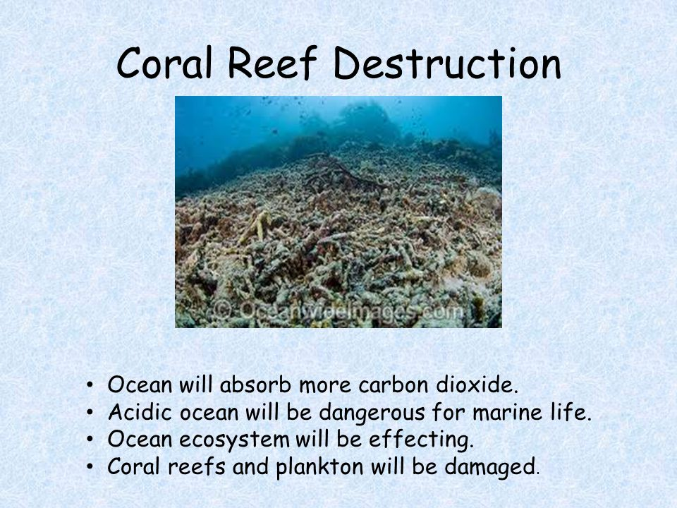 Coral Reef Destruction Ocean will absorb more carbon dioxide.