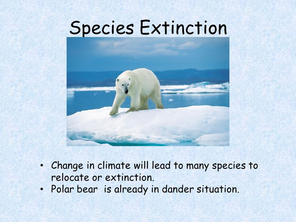 Species Extinction Change in climate will lead to many species to relocate or extinction.