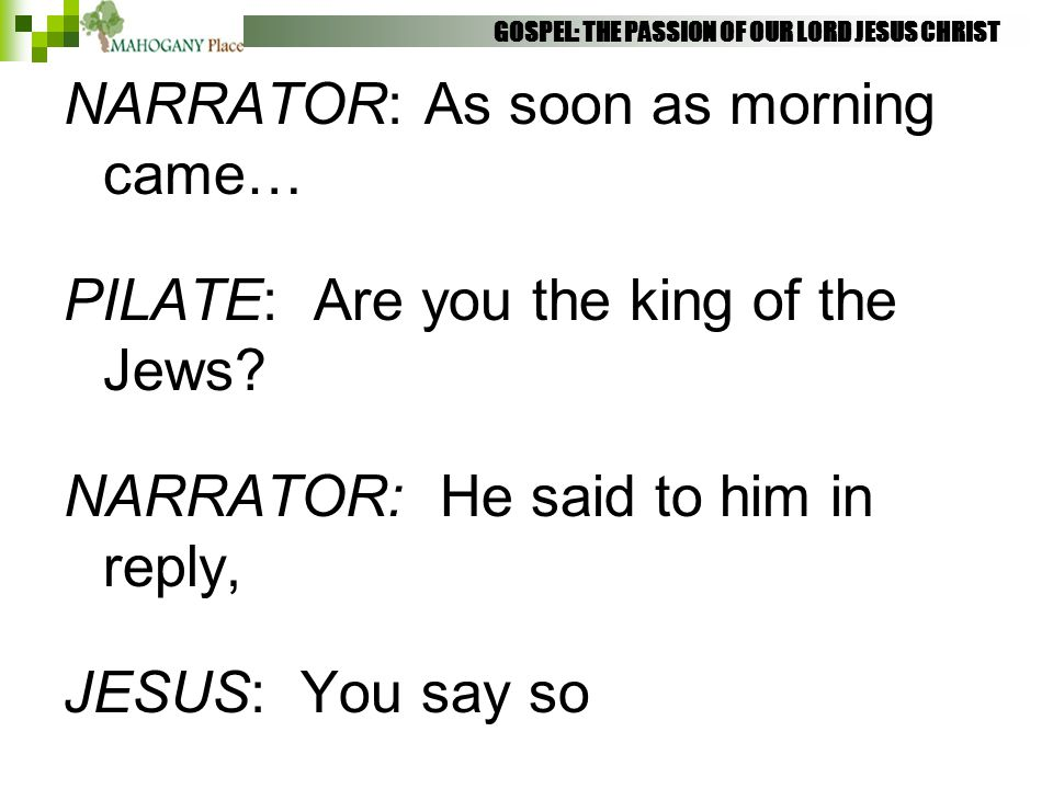 NARRATOR: As soon as morning came… PILATE: Are you the king of the Jews? NARRATOR: He said to him in reply, JESUS: You say so