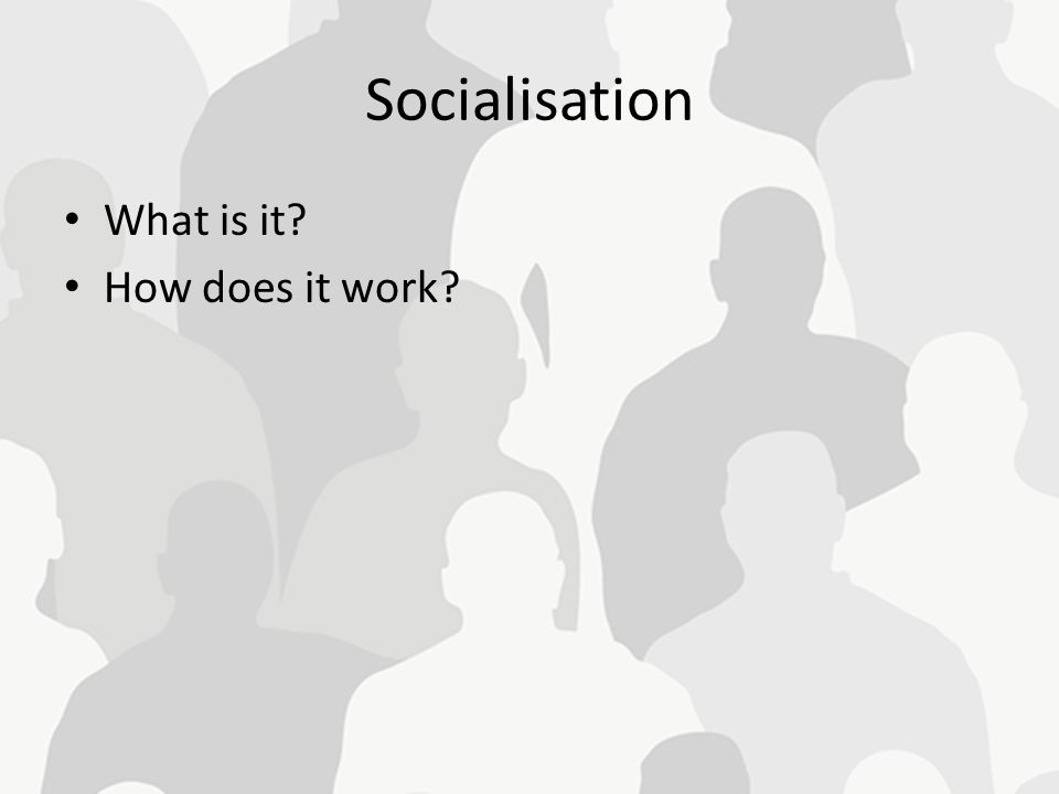 Socialisation What is it? How does it work?