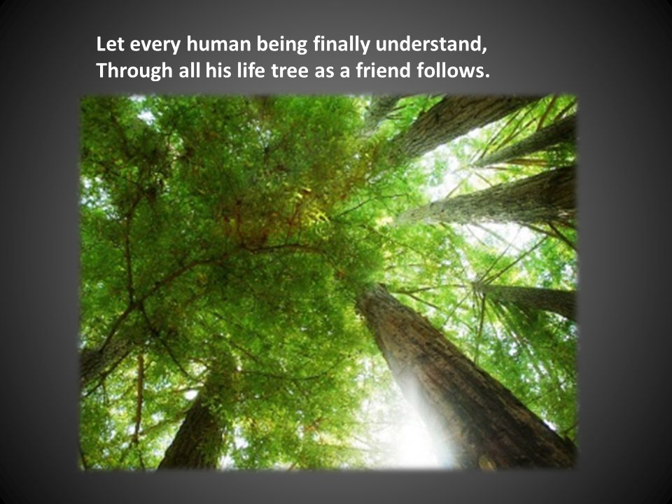 Let every human being finally understand, Through all his life tree as a friend follows.
