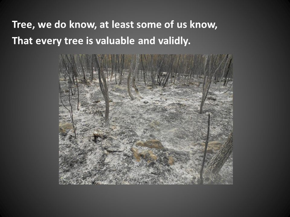 Tree, we do know, at least some of us know, That every tree is valuable and validly.