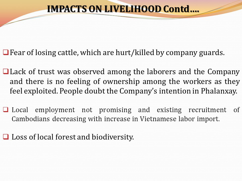 IMPACTS ON LIVELIHOOD Contd….  Fear of losing cattle, which are hurt/killed by company guards.