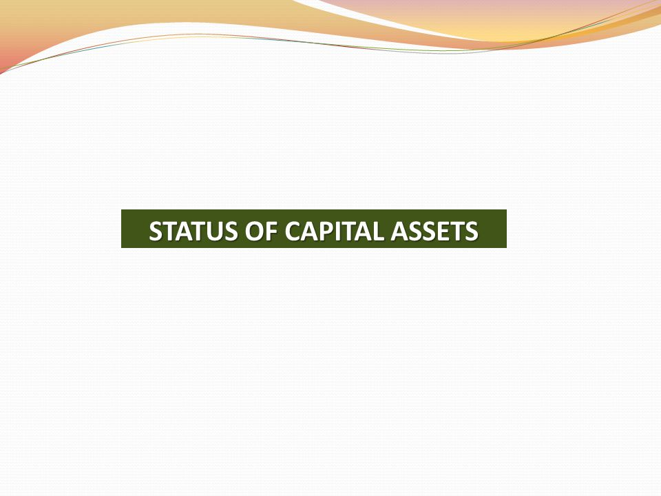 STATUS OF CAPITAL ASSETS